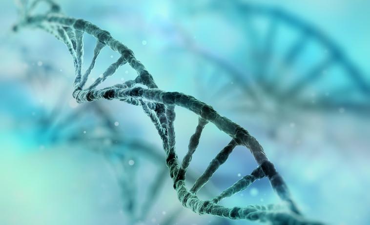 kloning av människor fördelar och nackdelar